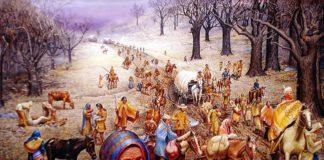 насильственное переселение индейцев