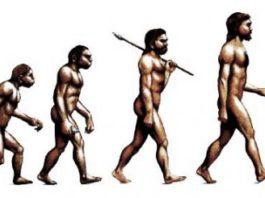 Эволюция продолжается?