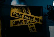 Проблема киберпреступности как современная криминальная угроза