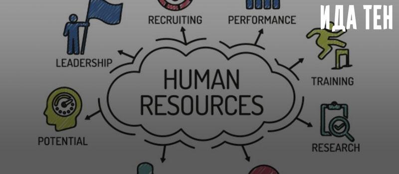 Эффективность вложений в человеческий капитал