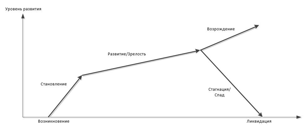 Модель жизненного цикла организации